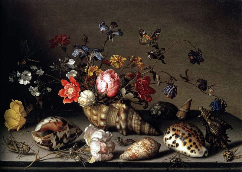 Still-Life of Flowers, Shells, and Insects, 1635, Balthasar van der Ast